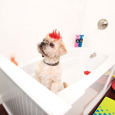 Pet Head Welpen-Shampoo Puppy Fun
