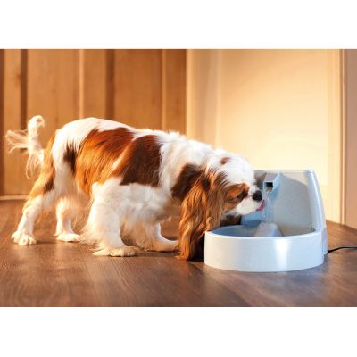 PetSafe® Drinkwell® Original drinkfontein