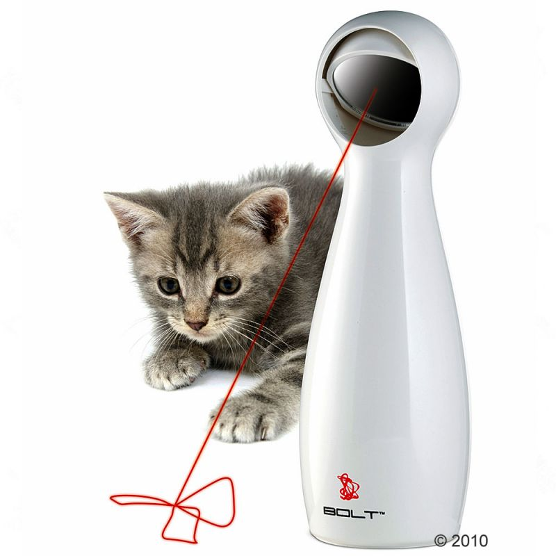 laserpekare till katt
