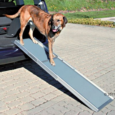 Petsafe Telescoop-Loopplank