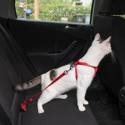 Trixie Pettorina per automobile per gatti