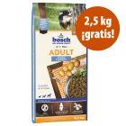 Pienso Bosch para perros 12.5  / 15 kg en oferta: hasta 2,5 kg ¡gratis!