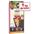 Pienso Bosch para perros 15 kg en oferta: 14 + 1 kg ¡gratis!