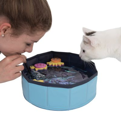 Piscina Kitty Pool para gatos