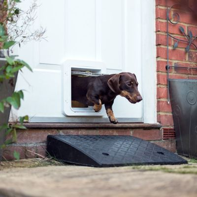 Porta per animali SureFlap Microchip Pet Door Connect