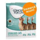 Preț de testare: 3 x 50 g Concept for Life Sterilised Cats Pui