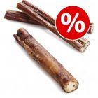 Premium Bull Pizzle - Special Price!*