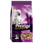Prestige Loro Parque Australian Papagei Mix