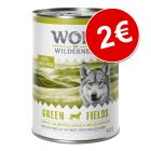 Prezzo tondo! 400 g Wolf of Wilderness Green Fields - Agnello