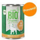 Prezzo prova! 1 x 400 g zooplus Bio Pollo con Riso & Carota