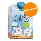 Prezzo prova! 6 x 200 ml Latte Catessy per gatti