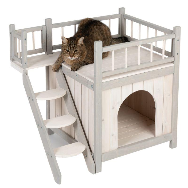 Cat Urine Under Deck