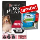 Pro Plan 12 / 14 kg pienso + snacks Purina Dentalife ¡gratis!