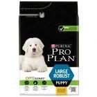 Pro Plan Large Puppy Robust Optistart, kurczak i ryż
