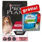 Pro Plan ração 12 kg/14 kg + snacks Purina Dentalife grátis!