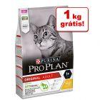 Pro Plan ração para gatos 10 kg em promoção: 9 + 1 grátis!
