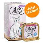 Probierknaller! Mixpack Catessy Schälchen Feine Pastete