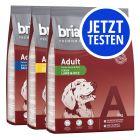 Probierpaket Briantos Adult 3 x 3 kg