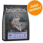 Probierpaket: Briantos getreidefrei 2 x 1 kg