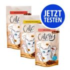Probierpaket Catessy Knabber-Snacks 3 x 65 g
