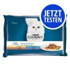 Probierpaket Gourmet Perle 4 x 85 g