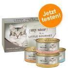 Probierpaket My Star Häppchen in Sauce  Gourmet Dose 4 x 85 g
