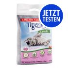 Probierpaket Tigerino Canada Katzenstreu 6 kg