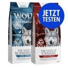 """Probierpaket Wolf of Wilderness - MINI Kroketten (""""The Taste Of"""")"""