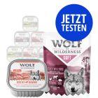 Probierpaket Wolf of Wilderness 6 x 300 g
