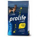 Prolife Smart Adult Medium/ Large Breed Pollo & Riso