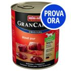 Provalo! Animonda GranCarno Original Adult  6 x 800 g