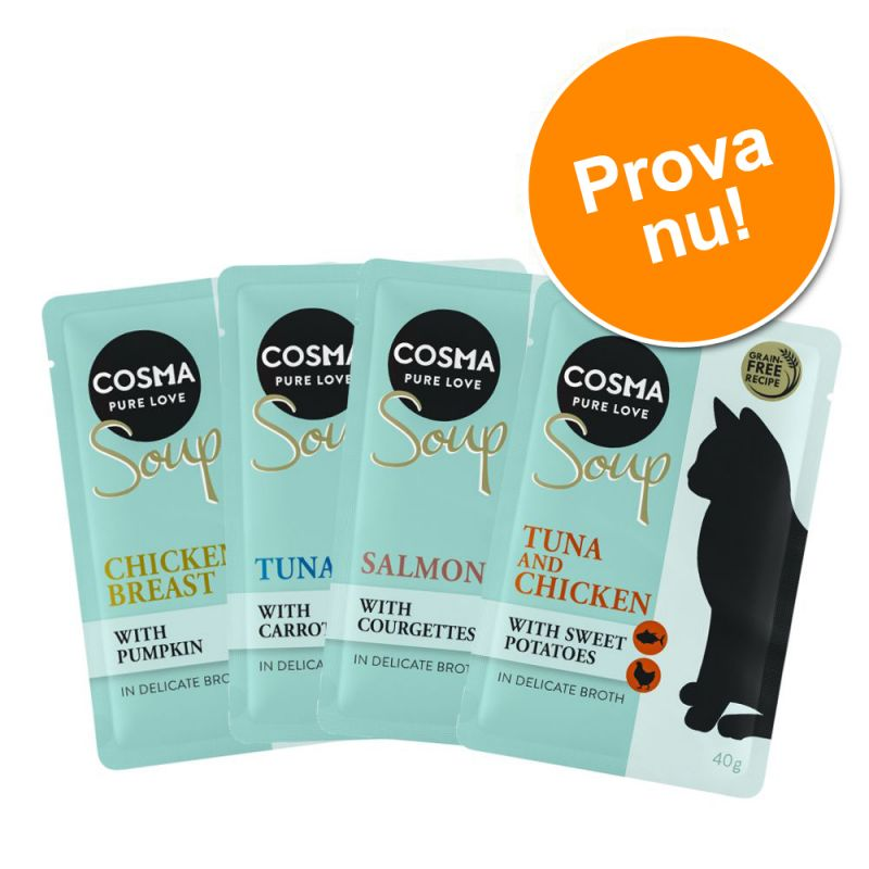 Provpack: Cosma Soup 4 x 40 g