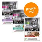 Provpack 6 x 85 g Pro Plan