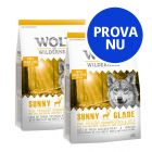 Provpack: 2 x 1 kg Wolf of Wilderness torrfoder