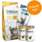 Provpack: Yarra Organic kyckling torrfoder + våtfoder + snacks