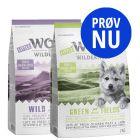 Prøv nu: Little Wolf of Wilderness Junior