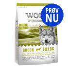 Prøv nu: Wolf of Wilderness Adult