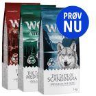 """Prøv nu: Wolf of Wilderness Adult """"The Taste Of"""""""