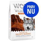 Prøv nu: Wolf of Wilderness Explore