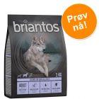 Prøvepakke: Briantos kornfri 2 x 1 kg