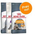 Prøvepakke: 3 x 400 g Royal Canin