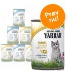 Prøvepakke: 6 x 400 g Yarrah Øko Pâté