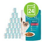 Purina One märkäruoat 24 x 85 g