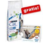 Purina Cat Chow, 15 kg + Animonda Milkies Selection, 2 x 4 x 15 g gratis!