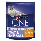Purina ONE Coat & Hairball Chicken & Whole Grains Dry Cat Food
