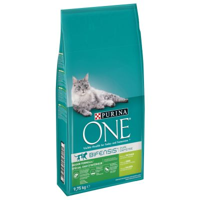 Purina ONE Indoor Turkey & Whole Grains Dry Cat Food