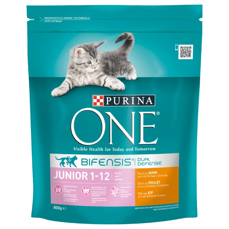 Purina ONE Junior Chicken & Whole Grains Dry Cat Food