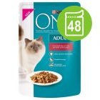 Purina ONE Kattenvoer Voordeelpakket 48 x 85 g