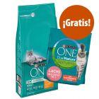 Purina ONE 6 kg pienso + 1,4 kg Purina Dual esterilizados ¡gratis!