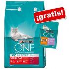 Purina ONE 3 kg pienso para gatos + 12 sobres comida húmeda ¡gratis!